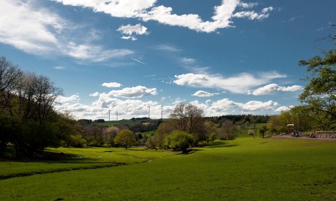 Naturwildpark in Freisen